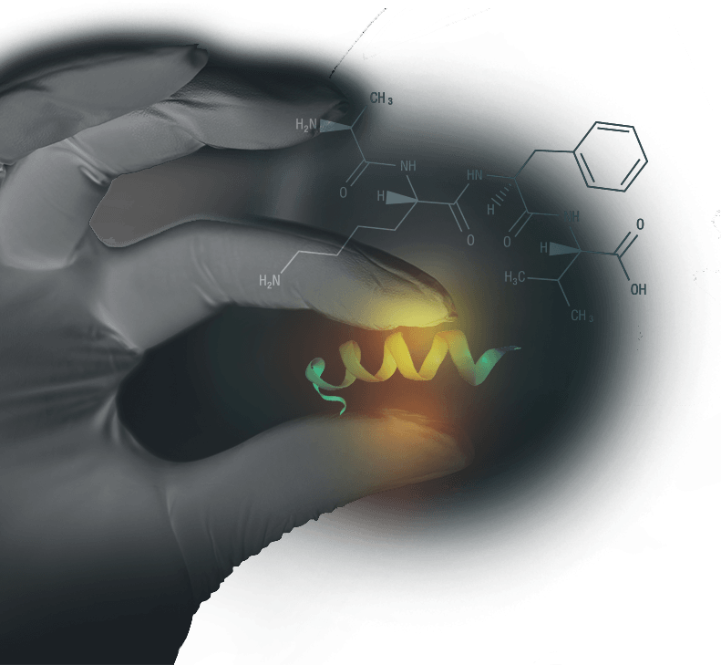 Cusom designed peptides
